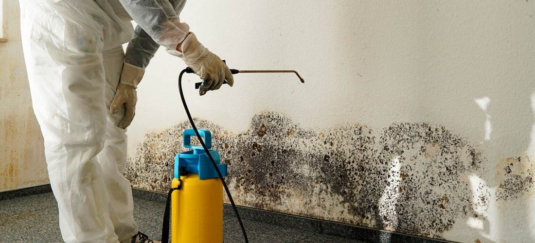 mold inspection chicago